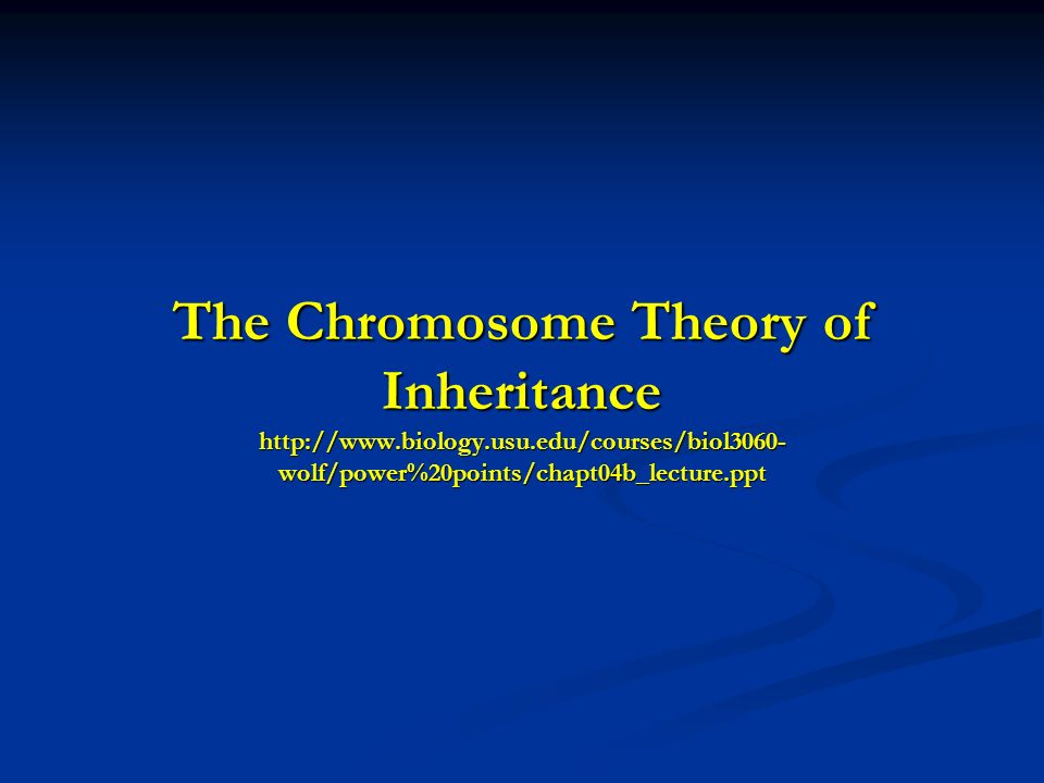 The Chromosome Theory of Inheritance http://www.biology.usu.edu/courses/biol3060- wolf/power%20points/chapt04b_lecture.ppt