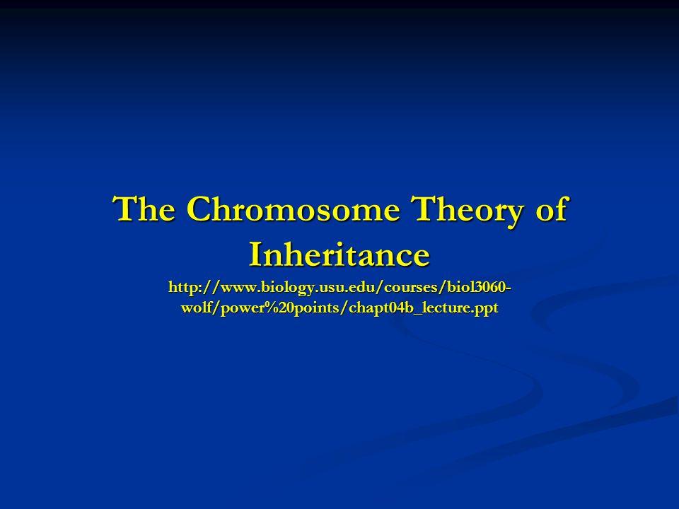 There is variation between species in how chromosomes determine an individuals sex __________________________________________________ Chromosome Females MalesOrganism __________________________________________________ XX-XY XX XY Mammals, Drosophila XX-XO XX XO Grasshoppers ZZ-ZW ZW ZZ Fish, Birds, Moths __________________________________________________