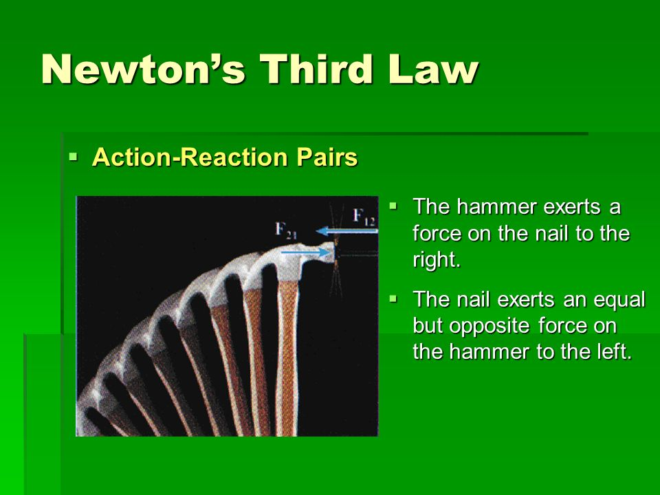 Newtons Third Law Action-Reaction Pairs Action-Reaction Pairs The hammer exerts a force on the nail to the right. The hammer exerts a force on the nai