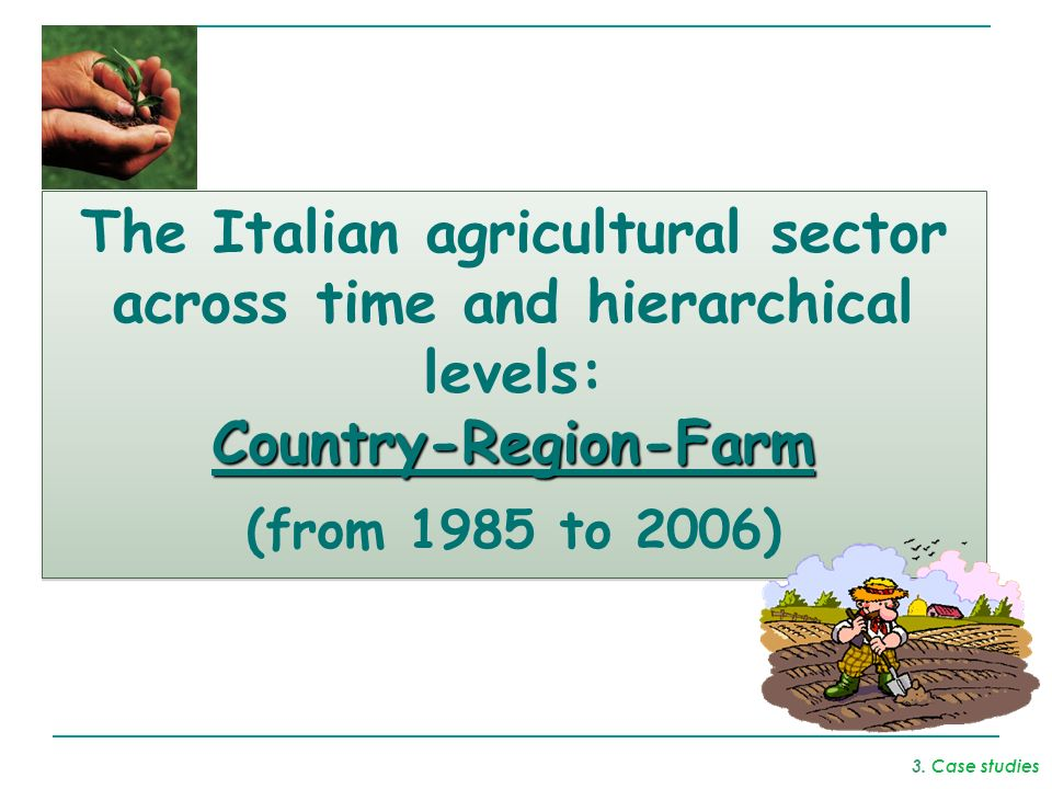 The Italian agricultural sector across time and hierarchical levels:Country-Region-Farm (from 1985 to 2006) The Italian agricultural sector across tim