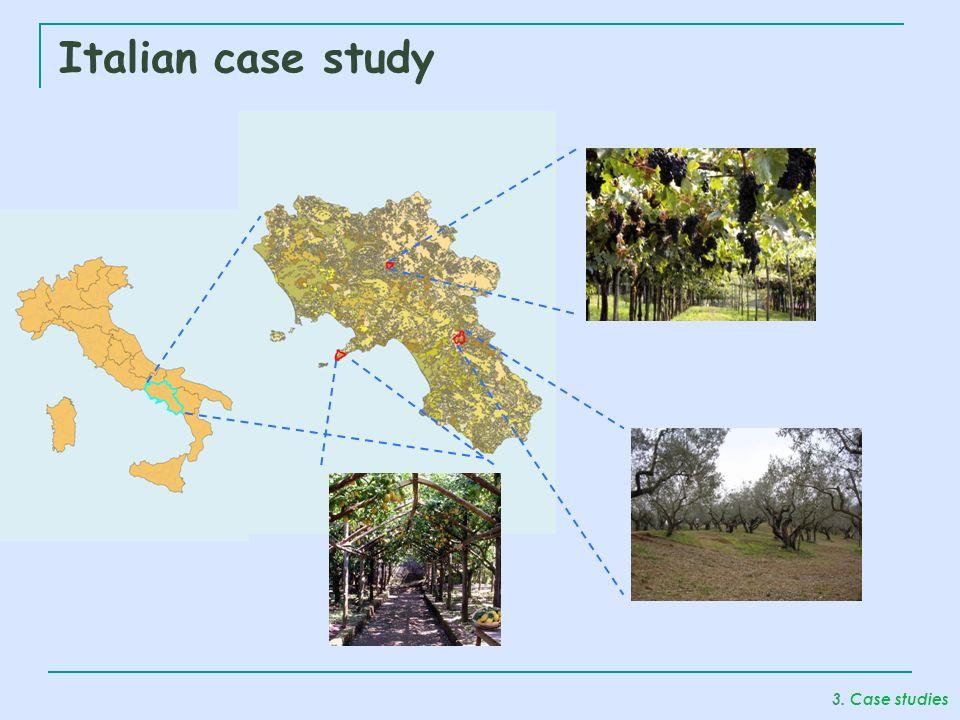 Italian case study 3. Case studies
