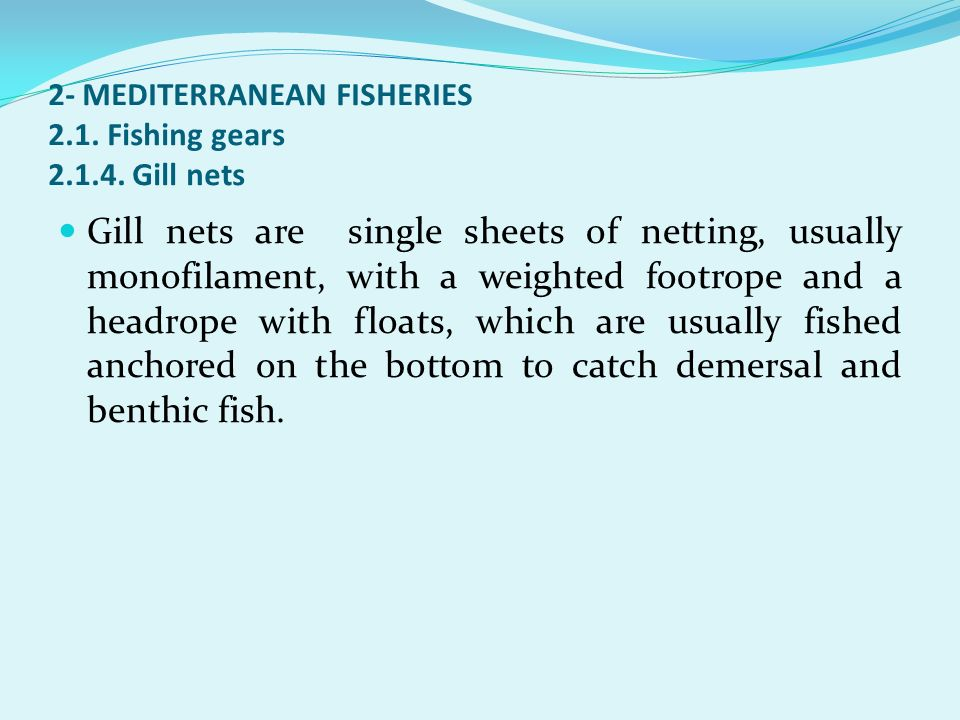 2- MEDITERRANEAN FISHERIES 2.1. Fishing gears 2.1.4. Gill nets Gill nets are single sheets of netting, usually monofilament, with a weighted footrope