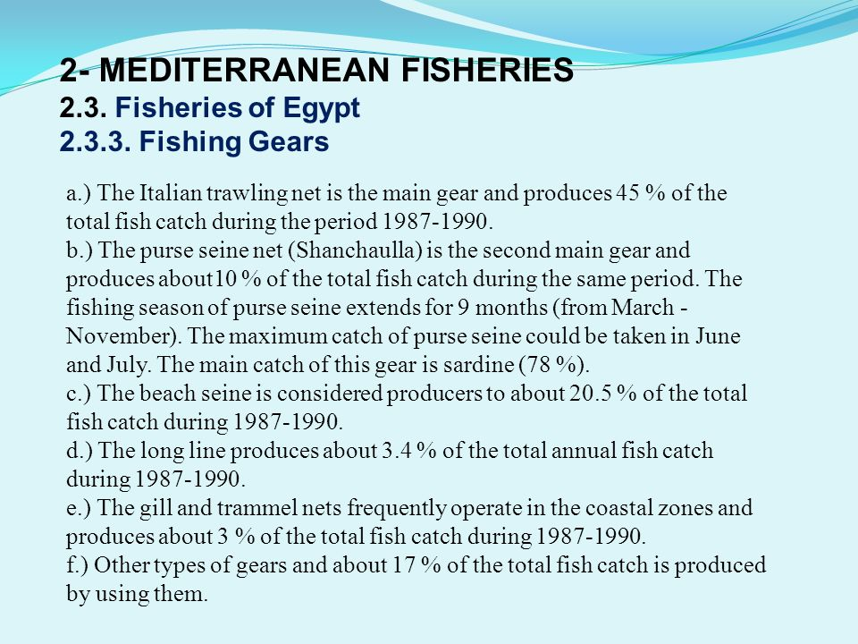 2- MEDITERRANEAN FISHERIES 2.3. Fisheries of Egypt 2.3.3. Fishing Gears a.) The Italian trawling net is the main gear and produces 45 % of the total f