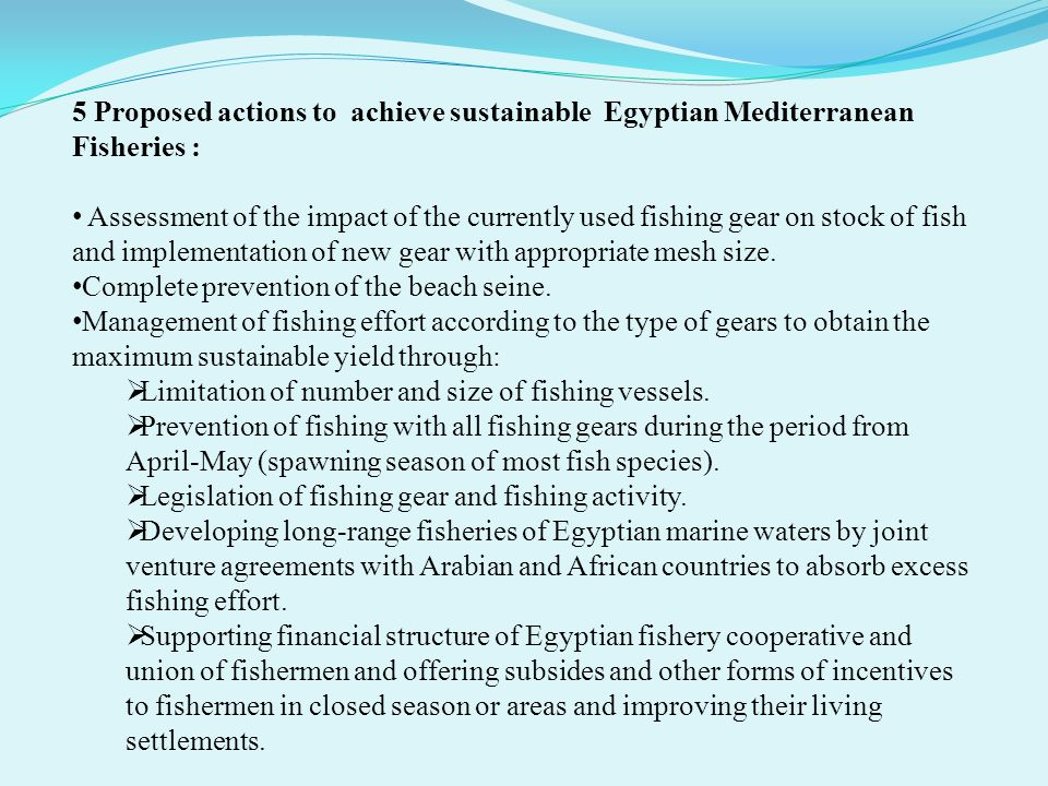 5 Proposed actions to achieve sustainable Egyptian Mediterranean Fisheries : Assessment of the impact of the currently used fishing gear on stock of f