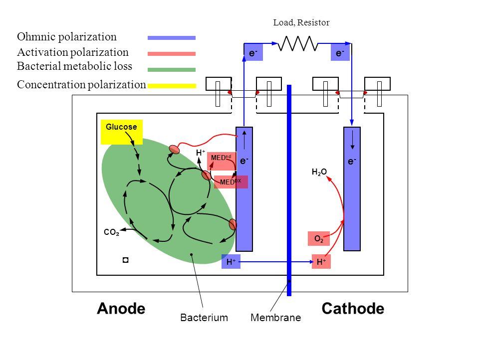 AnodeCathode BacteriumMembrane CO Glucose H+H+ H+H+ e-e- MED nd MED DX e-e- e-e- H+H+ O2O2 H2OH2O e-e- Ohmnic polarization Activation polarization Bac