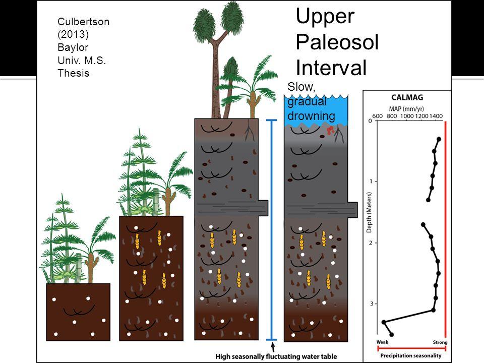 Upper Paleosol Interval Culbertson (2013) Baylor Univ. M.S. Thesis Slow, gradual drowning