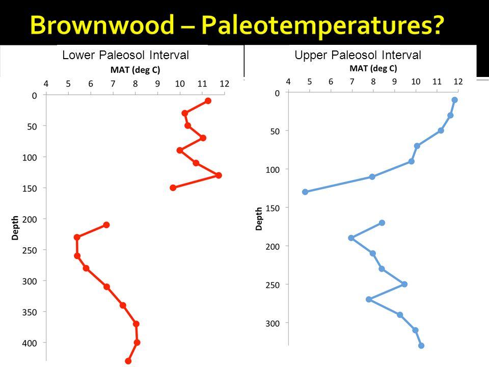 Lower Paleosol IntervalUpper Paleosol Interval