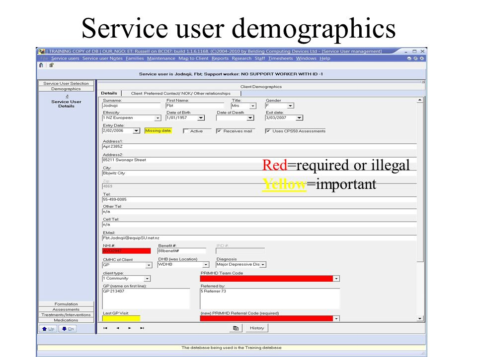Service user demographics Belding Computing Red=required or illegal Yellow=important