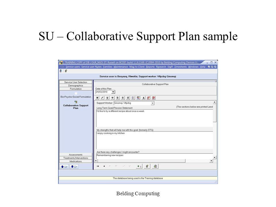 SU – Collaborative Support Plan sample Belding Computing