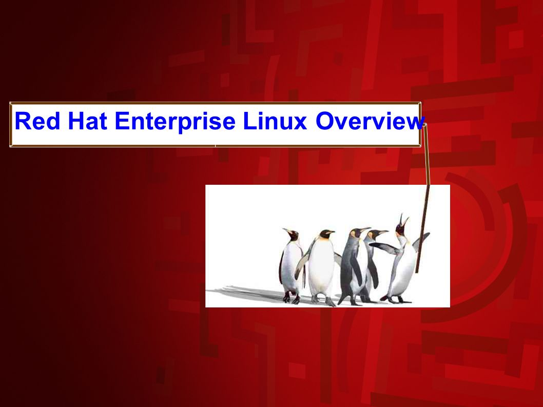 RHEL5 & MySQL Database Appliances / August 15 th 2007 Product features subject to change prior to availability 9 Red Hat Enterprise Linux Overview