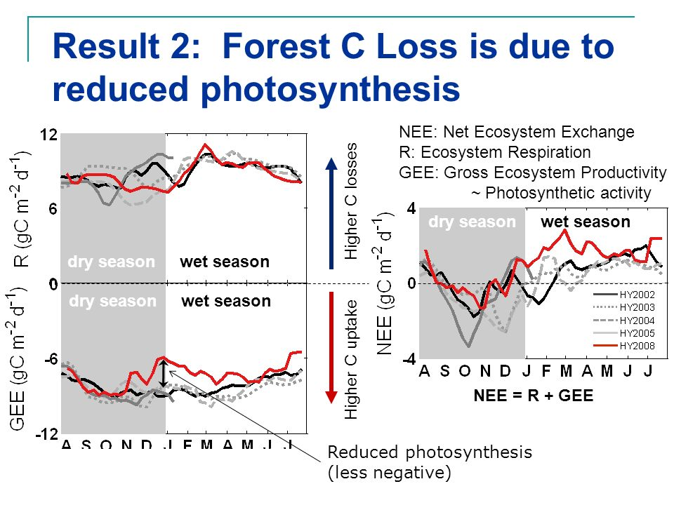 Result 2: Forest C Loss is due to reduced photosynthesis NEE: Net Ecosystem Exchange R: Ecosystem Respiration GEE: Gross Ecosystem Productivity ~ Phot