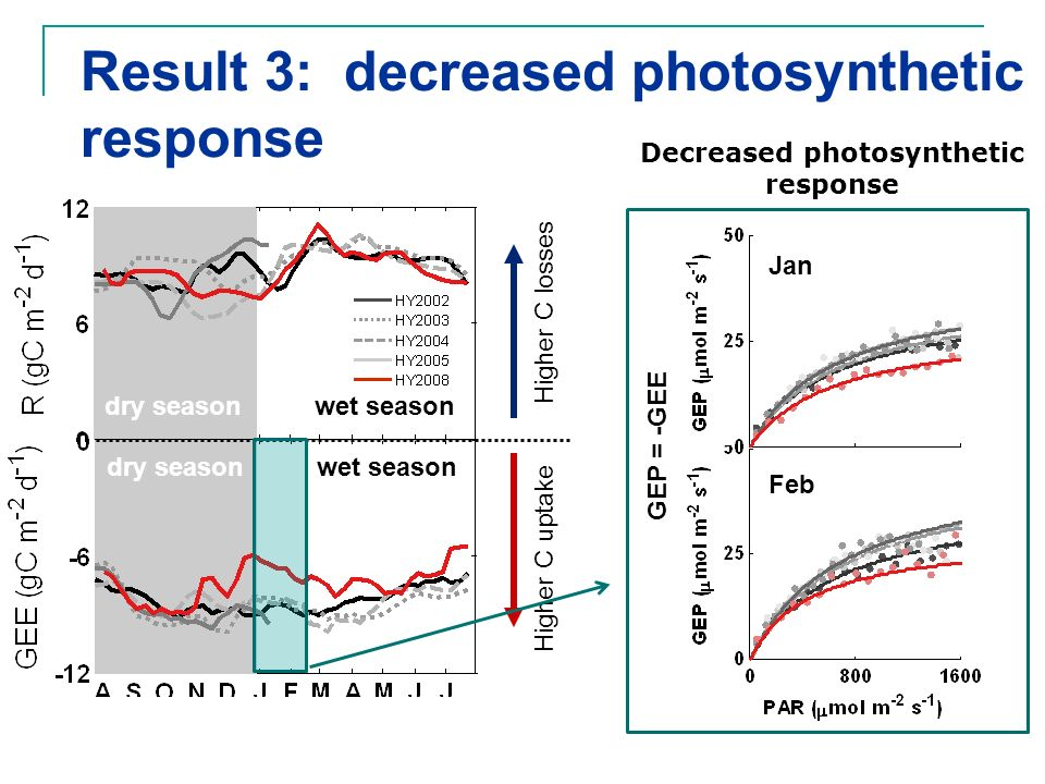 Higher C uptake Higher C losses dry season wet season Result 3: decreased photosynthetic response Decreased photosynthetic response Jan Feb GEP = -GEE