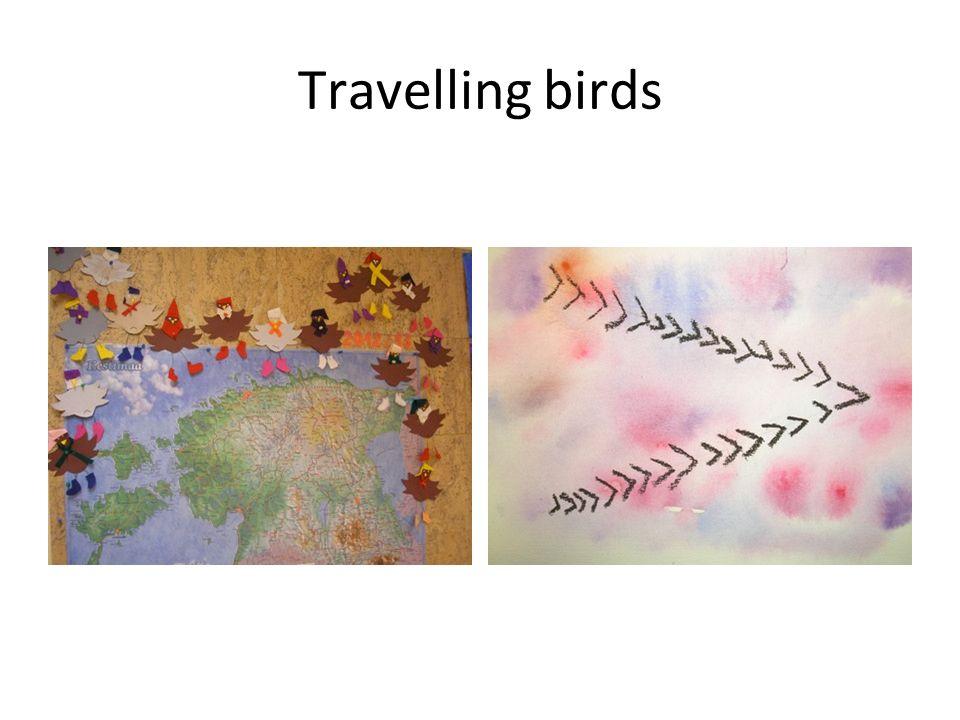 Travelling birds