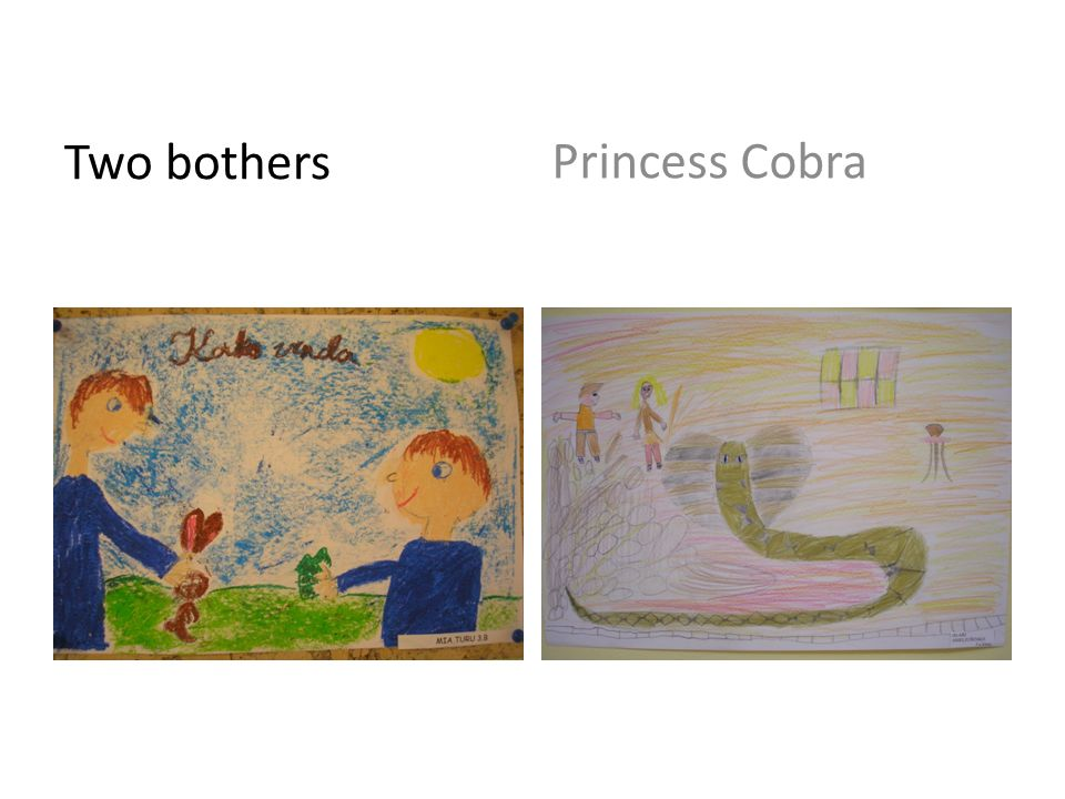 Two bothers Princess Cobra