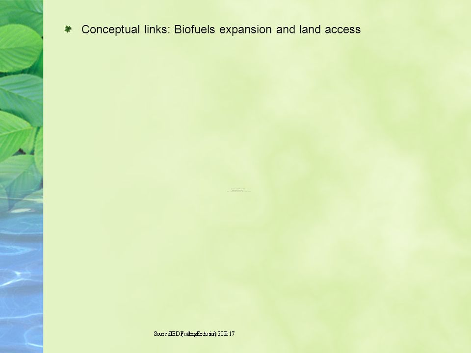 Conceptual links: Biofuels expansion and land access