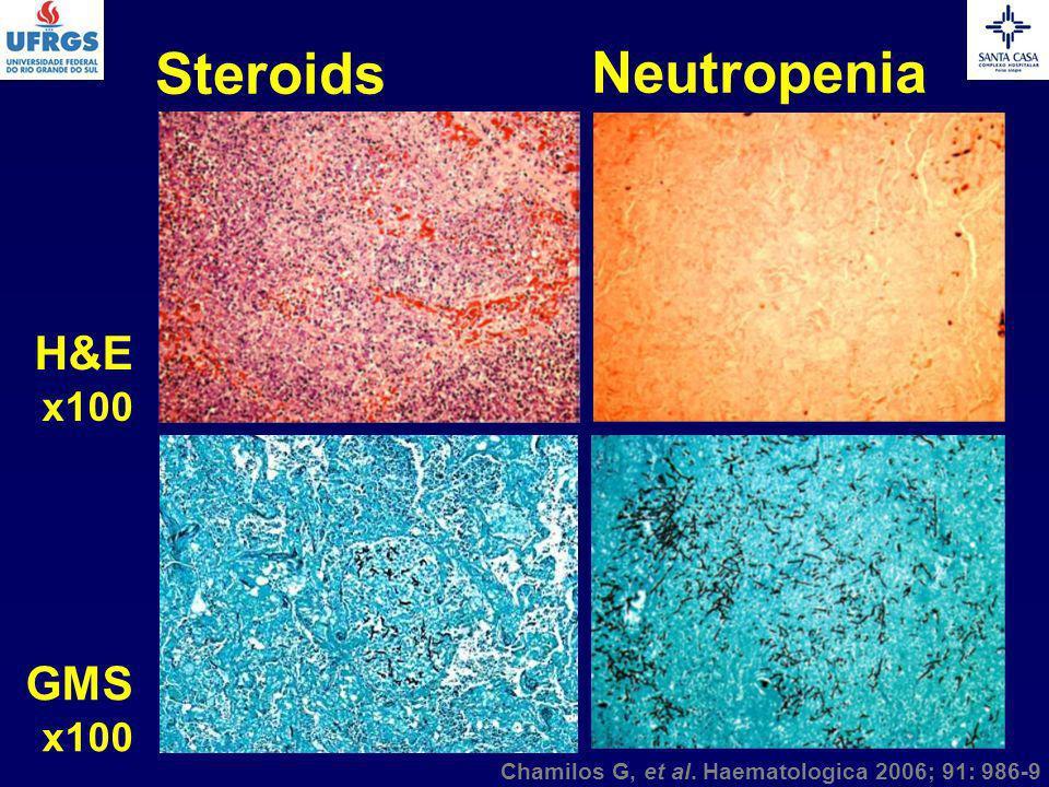 Chamilos G, et al. Haematologica 2006; 91: 986-9 H&E x100 Steroids Neutropenia GMS x100