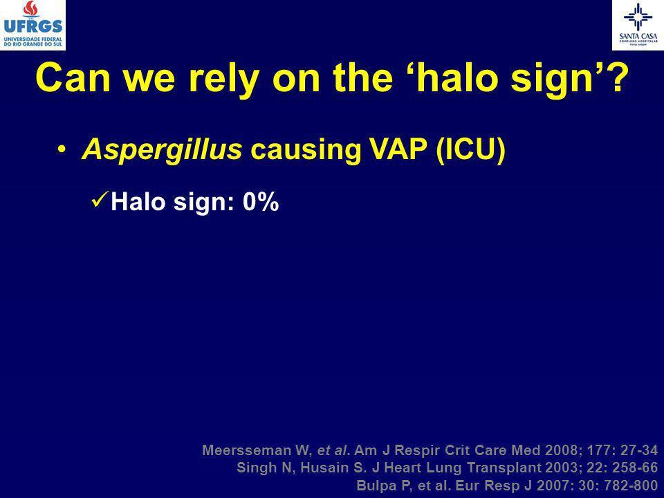 Can we rely on the halo sign? Aspergillus causing VAP (ICU) Halo sign: 0% Meersseman W, et al. Am J Respir Crit Care Med 2008; 177: 27-34 Singh N, Hus