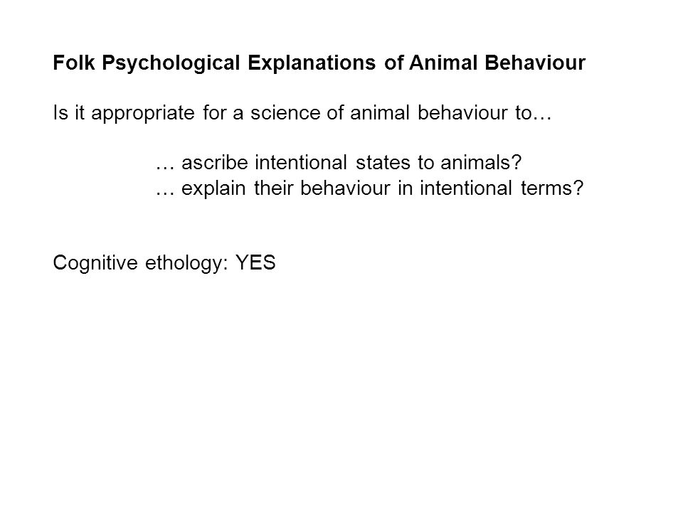 Folk Psychological Explanations of Animal Behaviour Is it appropriate for a science of animal behaviour to… … ascribe intentional states to animals.