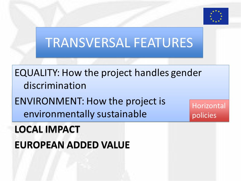 TRANSVERSAL FEATURES EQUALITY: How the project handles gender discrimination ENVIRONMENT: How the project is environmentally sustainable LOCAL IMPACT EUROPEAN ADDED VALUE EQUALITY: How the project handles gender discrimination ENVIRONMENT: How the project is environmentally sustainable LOCAL IMPACT EUROPEAN ADDED VALUE Horizontal policies