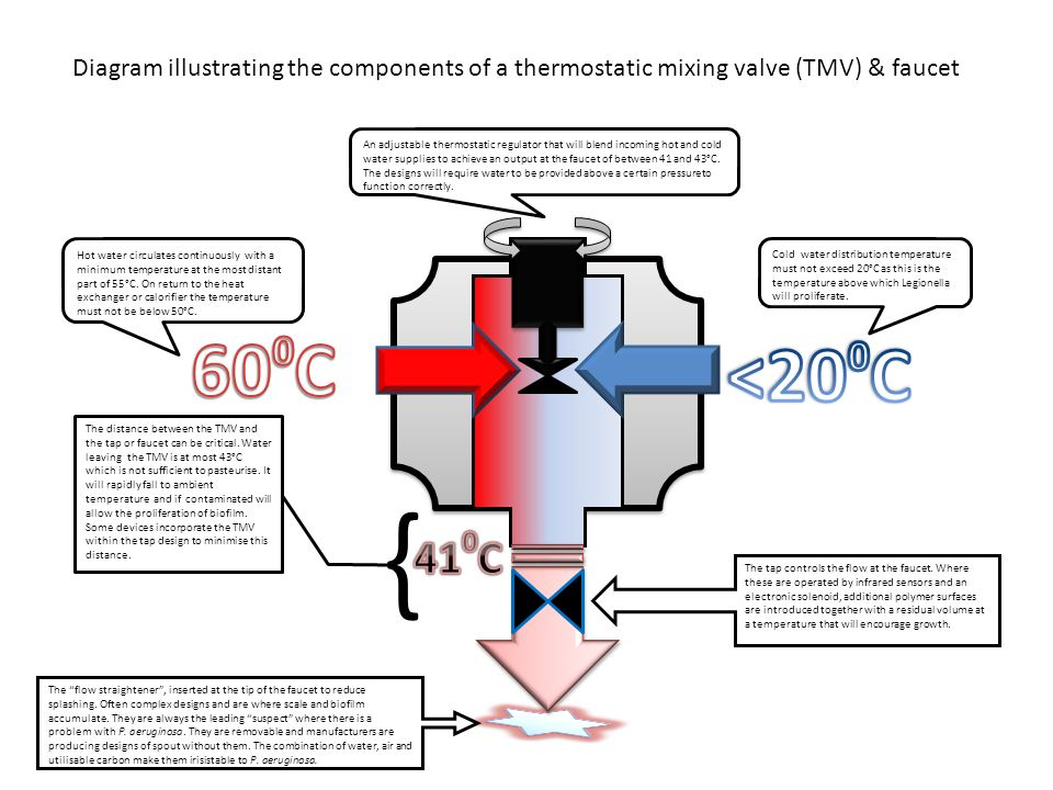 Diagram illustrating the components of a thermostatic mixing valve (TMV) & faucet Hot water circulates continuously with a minimum temperature at the