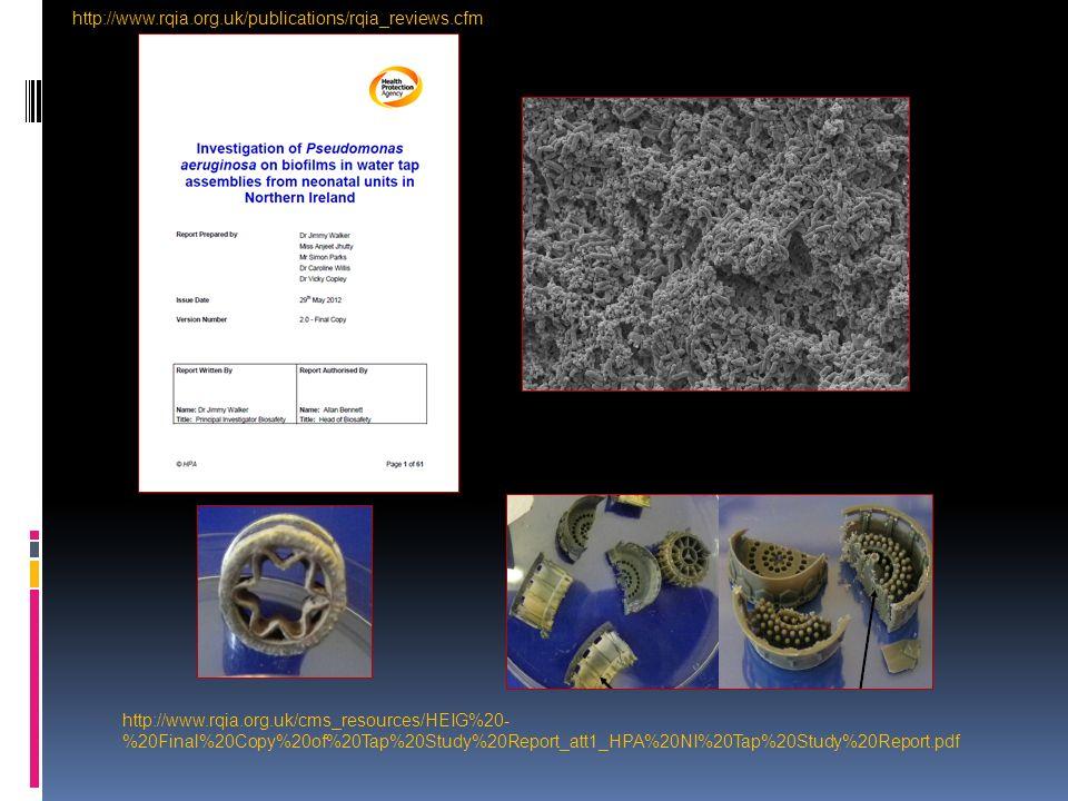 A new source of P.aeruginosa Wilson, M. G., R. C.