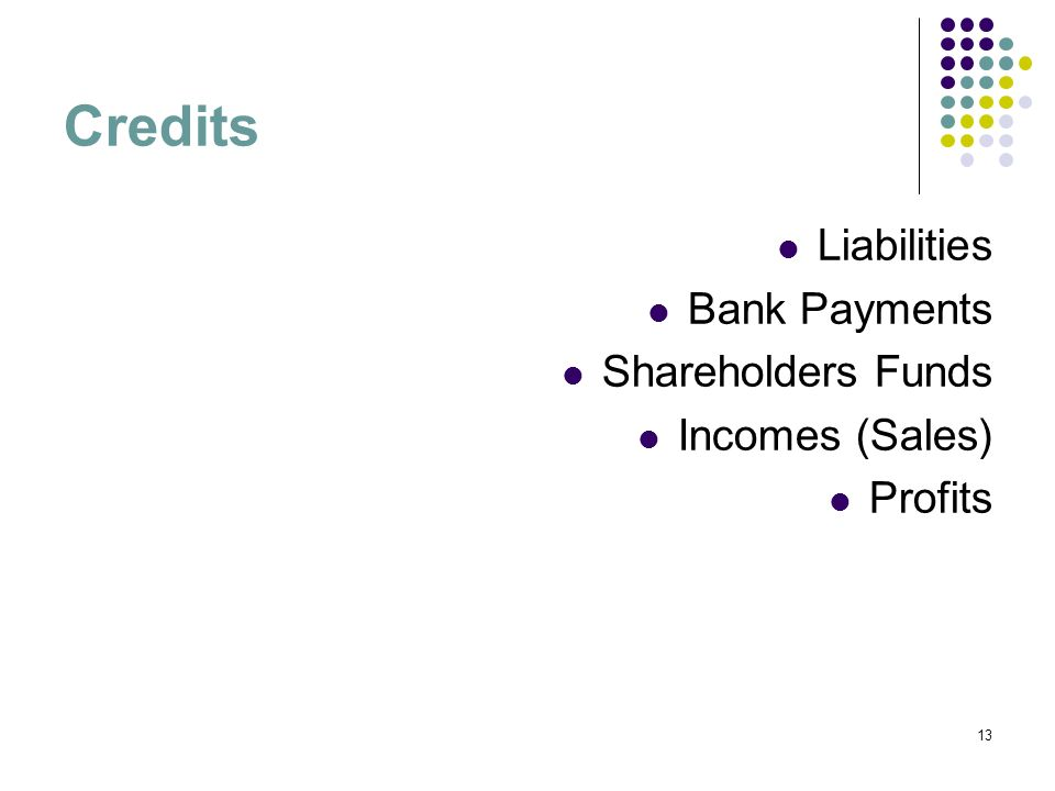 13 Credits Liabilities Bank Payments Shareholders Funds Incomes (Sales) Profits