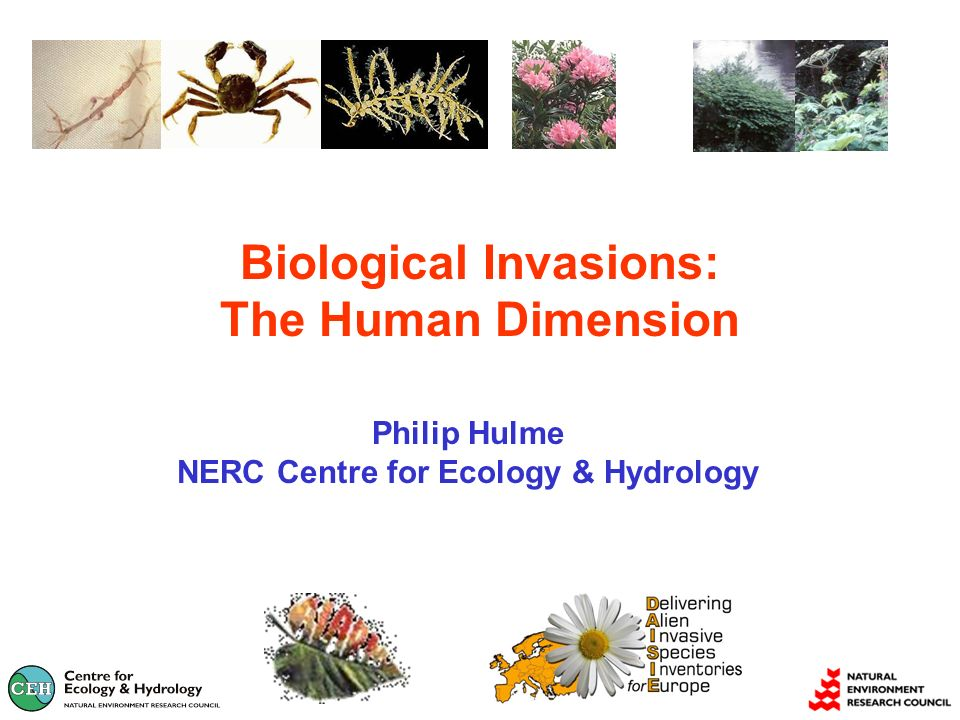 Biological Invasions: The Human Dimension Philip Hulme NERC Centre for Ecology & Hydrology