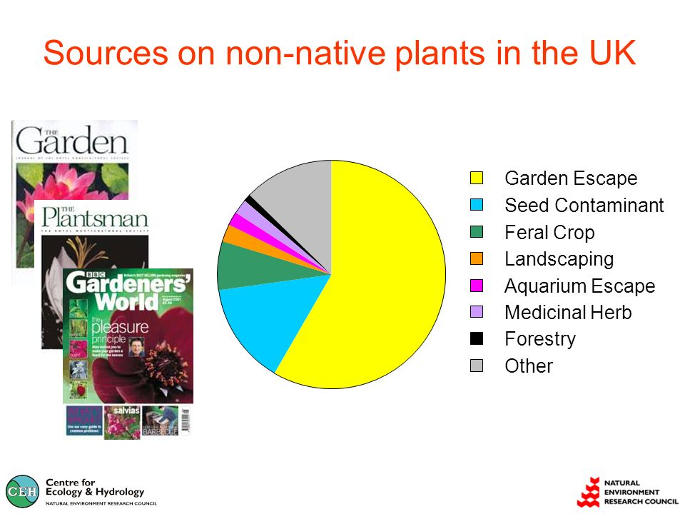 Sources on non-native plants in the UK Garden Escape Seed Contaminant Feral Crop Landscaping Aquarium Escape Medicinal Herb Forestry Other