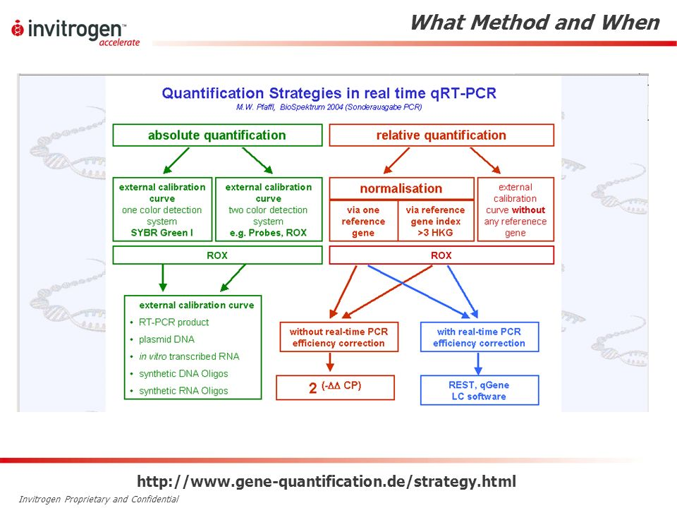 Invitrogen Proprietary and Confidential What Method and When http://www.gene-quantification.de/strategy.html