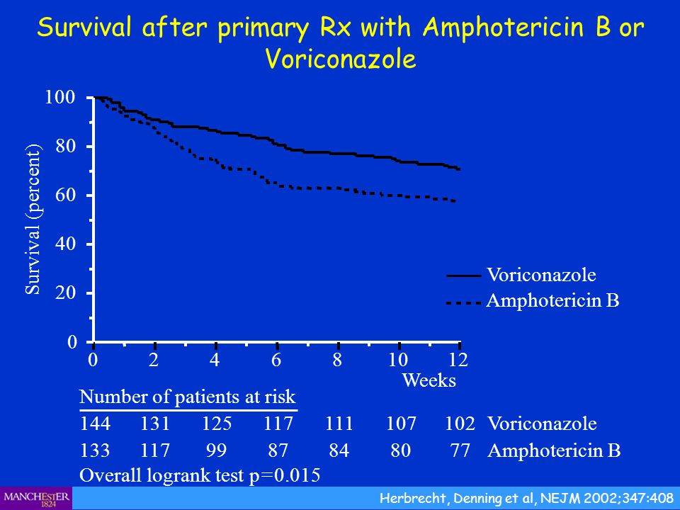 Survival after primary Rx with Amphotericin B or Voriconazole Herbrecht, Denning et al, NEJM 2002;347:408
