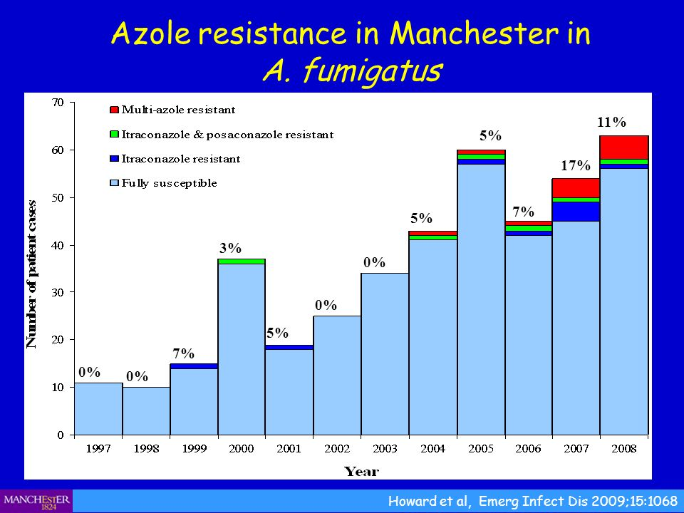 Azole resistance in Manchester in A.