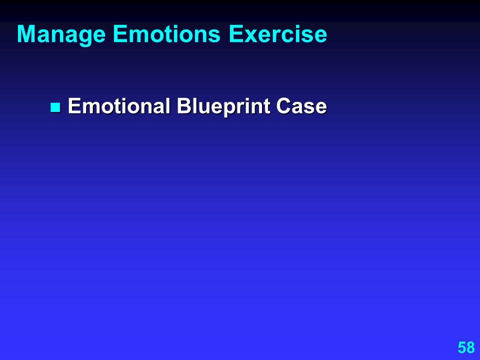 58 Manage Emotions Exercise Emotional Blueprint Case Emotional Blueprint Case