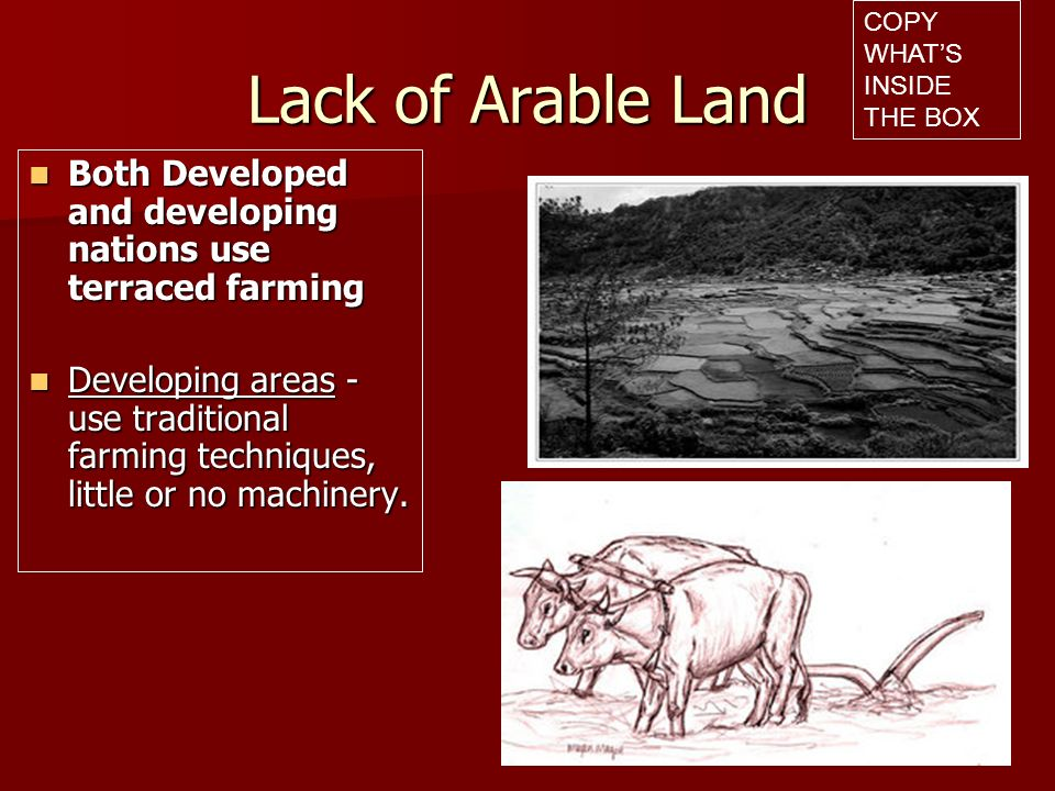 Lack of Arable Land Land Reclamation- bringing land damaged by natural or human causes back into use for farming Land Reclamation- bringing land damaged by natural or human causes back into use for farming Developed nations only – too expensive Developed nations only – too expensive COPY WHATS INSIDE THE BOX
