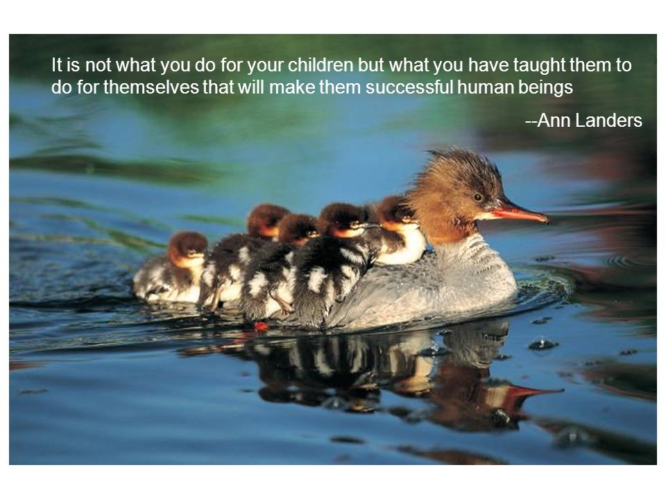 It is not what you do for your children but what you have taught them to do for themselves that will make them successful human beings --Ann Landers