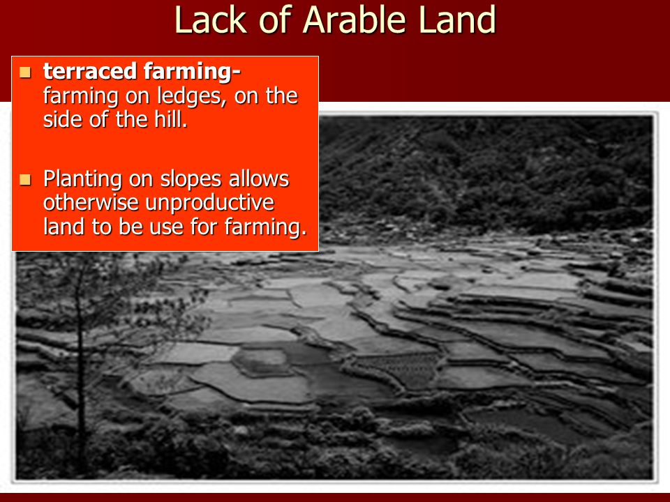 Lack of Arable Land terraced farming- farming on ledges, on the side of the hill. terraced farming- farming on ledges, on the side of the hill. Planti