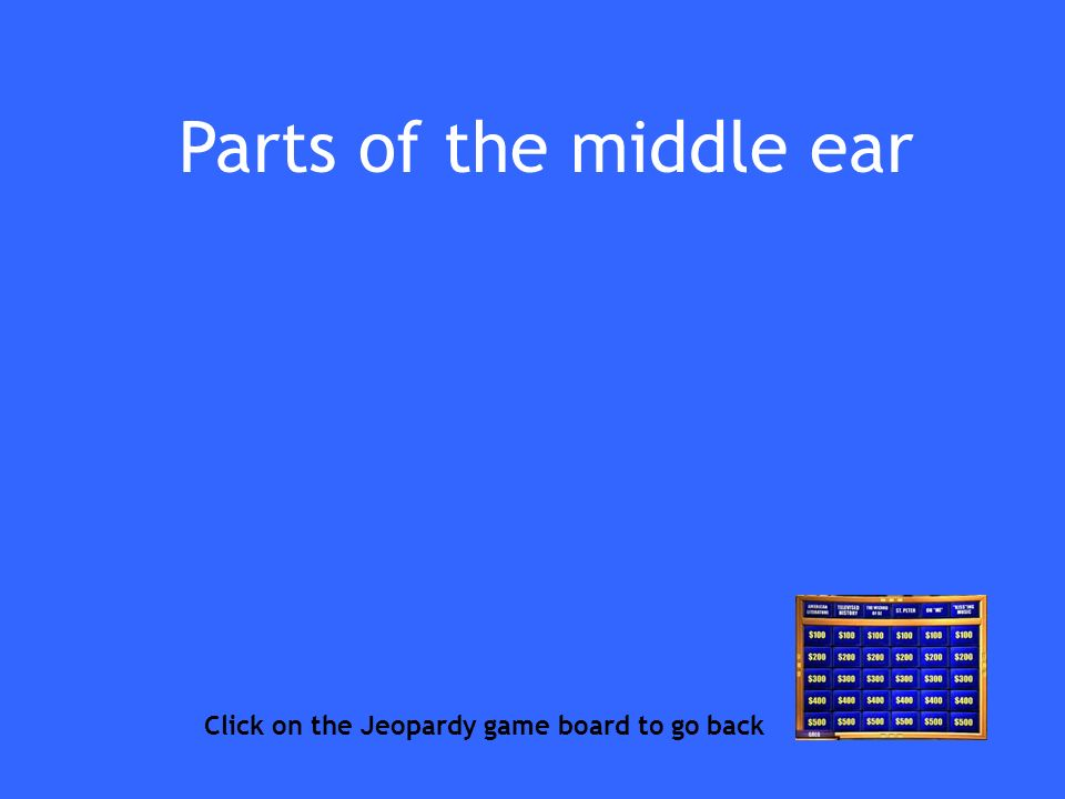 Parts of the middle ear Click on the Jeopardy game board to go back