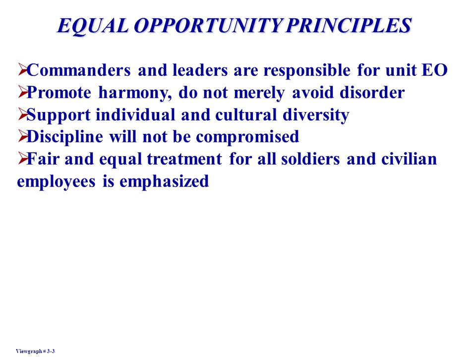 EQUAL OPPORTUNITY PRINCIPLES Viewgraph # 3-3 Commanders and leaders are responsible for unit EO Promote harmony, do not merely avoid disorder Support