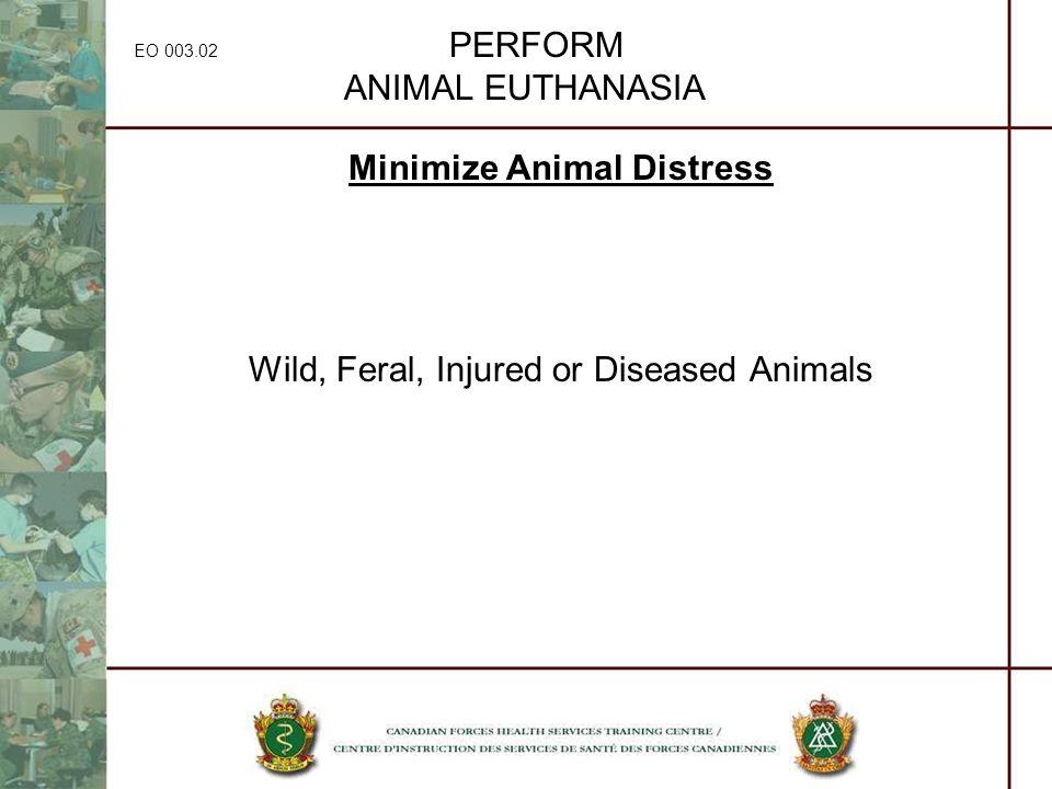 EO 003.02 PERFORM ANIMAL EUTHANASIA Minimize Animal Distress Wild, Feral, Injured or Diseased Animals