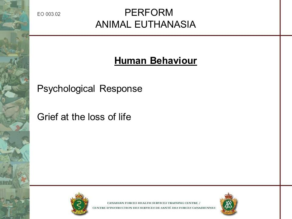 EO 003.02 PERFORM ANIMAL EUTHANASIA Human Behaviour Psychological Response Grief at the loss of life