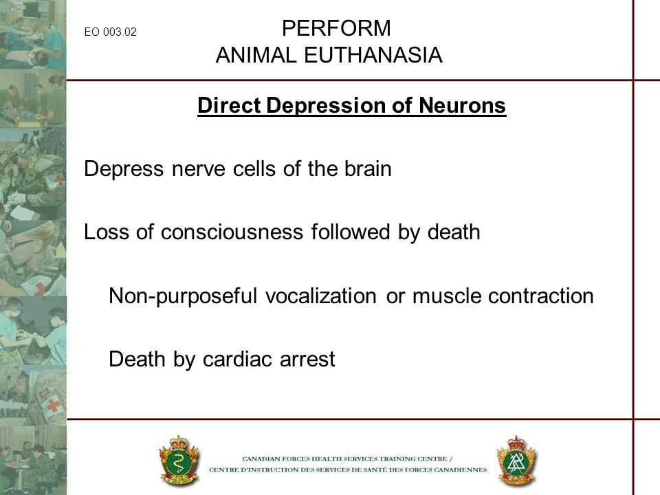 EO 003.02 PERFORM ANIMAL EUTHANASIA Direct Depression of Neurons Depress nerve cells of the brain Loss of consciousness followed by death Non-purposef