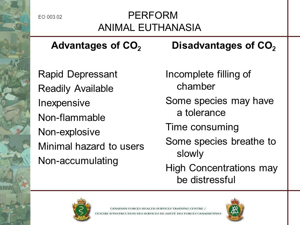 EO 003.02 PERFORM ANIMAL EUTHANASIA Advantages of CO 2 Rapid Depressant Readily Available Inexpensive Non-flammable Non-explosive Minimal hazard to us