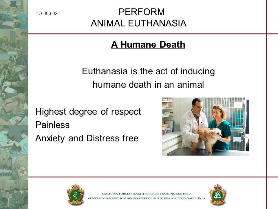 EO 003.02 PERFORM ANIMAL EUTHANASIA A Humane Death Euthanasia is the act of inducing humane death in an animal Highest degree of respect Painless Anxi