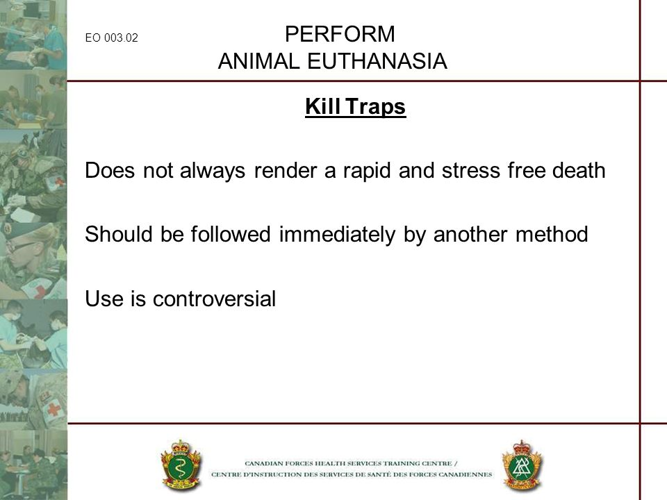 EO 003.02 PERFORM ANIMAL EUTHANASIA Kill Traps Does not always render a rapid and stress free death Should be followed immediately by another method U