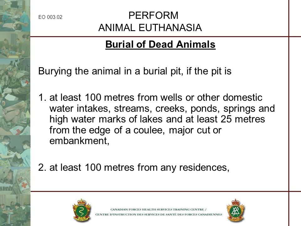 EO 003.02 PERFORM ANIMAL EUTHANASIA Burial of Dead Animals Burying the animal in a burial pit, if the pit is 1.at least 100 metres from wells or other