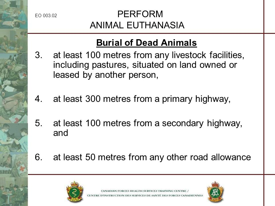 EO 003.02 PERFORM ANIMAL EUTHANASIA Burial of Dead Animals 3.at least 100 metres from any livestock facilities, including pastures, situated on land o