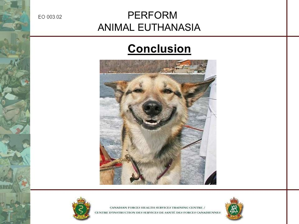 EO 003.02 PERFORM ANIMAL EUTHANASIA Conclusion