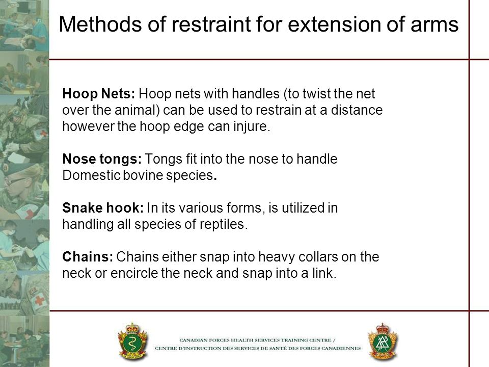 Methods of restraint for extension of arms Hoop Nets: Hoop nets with handles (to twist the net over the animal) can be used to restrain at a distance