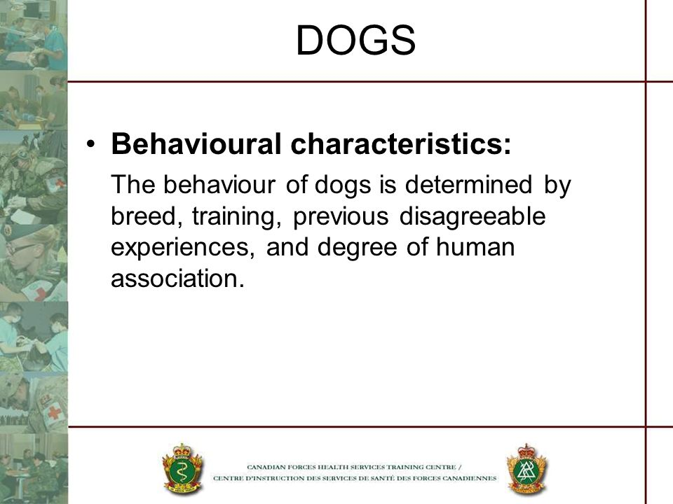 DOGS Behavioural characteristics: The behaviour of dogs is determined by breed, training, previous disagreeable experiences, and degree of human assoc
