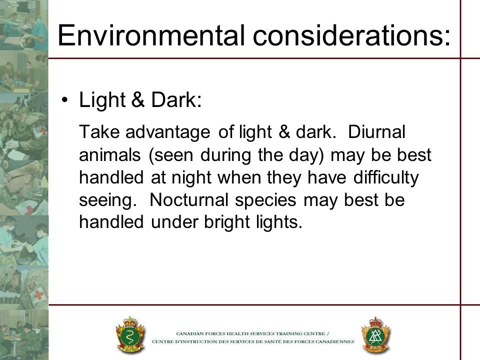 Environmental considerations: Light & Dark: Take advantage of light & dark. Diurnal animals (seen during the day) may be best handled at night when th