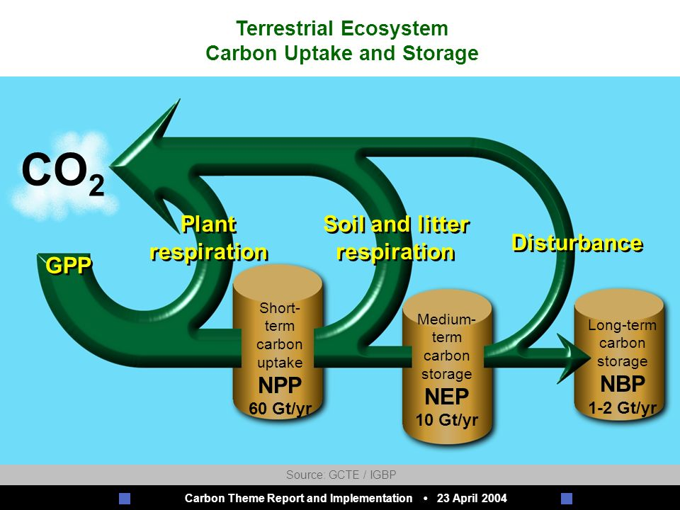 Carbon Theme Report and Implementation 23 April 2004 C h a l l e n g e s o f a C h a n g i n g E a r t h J u l y 2 0 0 1 CO 2 GPP Plant respiration Plant respiration Soil and litter respiration Soil and litter respiration Disturbance Short- term carbon uptake NPP 60 Gt/yr Medium- term carbon storage NEP 10 Gt/yr Long-term carbon storage NBP 1-2 Gt/yr Terrestrial Ecosystem Carbon Uptake and Storage Source: GCTE / IGBP